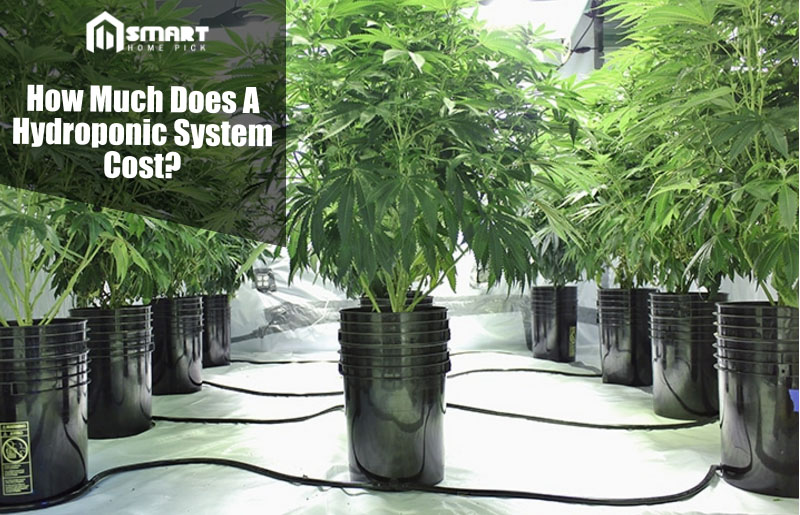 How Much Does A Hydroponic System Cost on Helping The Environment