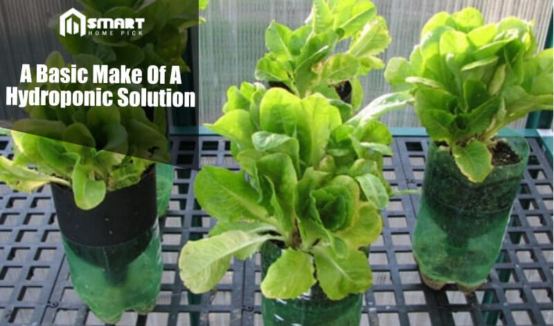 homemade hydroponic solution